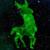 Zdjęcie profilowe Azurrka